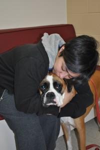 perro-dueño estudio clinico